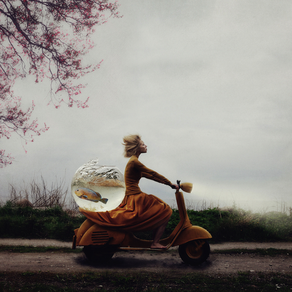 © Kylli Sparre, Estonia, Winer, Enhanced, Open Competition, 2014 Sony World Photography Awards