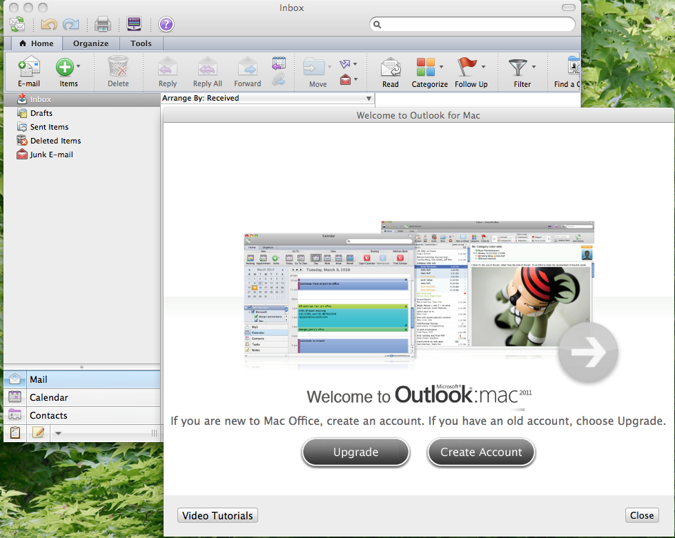 Office Mac Beta