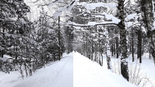 Fotograaf annab nõu: Kuidas teha nutitelefoniga ilusaid talviseid pilte?