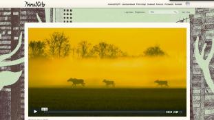 Täna avatakse Eesti esimene loodusfilmile pühendunud portaal