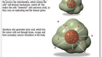 Teadlased leidsid ravi vähile, kuid kedagi ei huvita