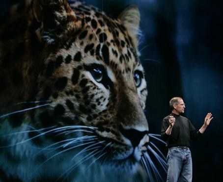 Leopard, arrr!